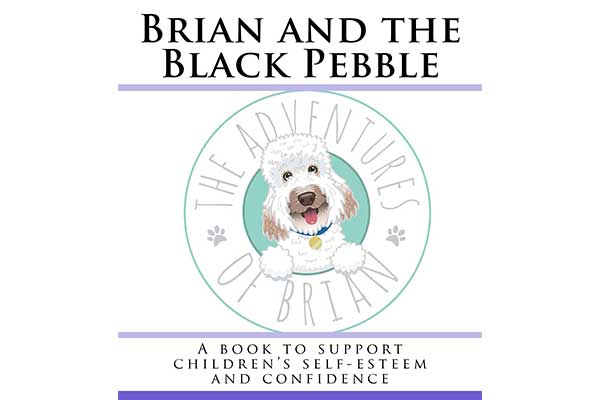 Brian And The Black Pebble
