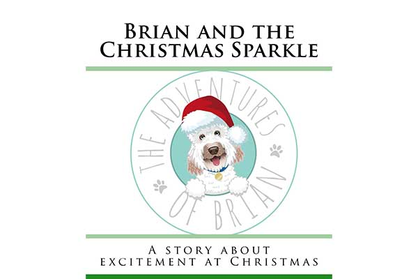 Brian And The Christmas Sparkle
