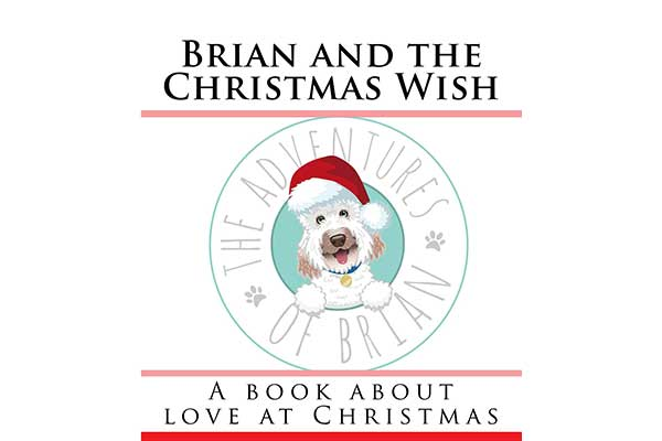 Brian And The Christmas Wish