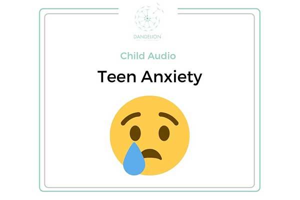 Teen Anxiety Audio Book