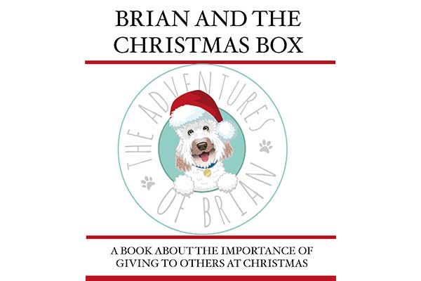 Brian And The Christmas Box