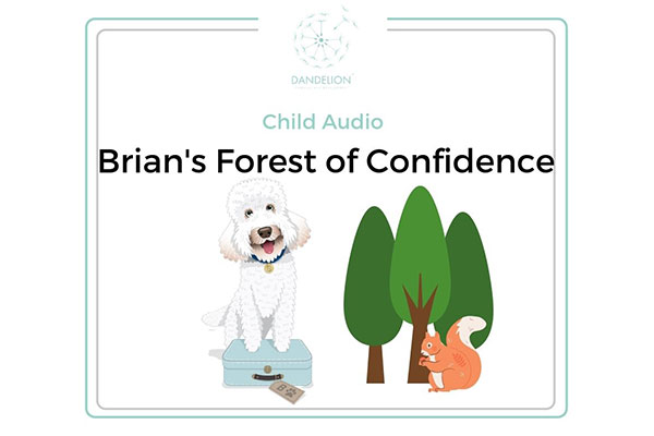 Brian's Forest Of Confidence
