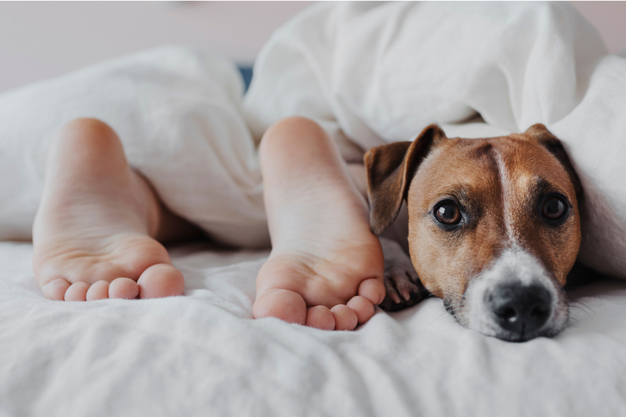 6 Ways To Improve Children's Sleep Hygiene